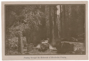 Passing through the Redwoods of Mendocino County