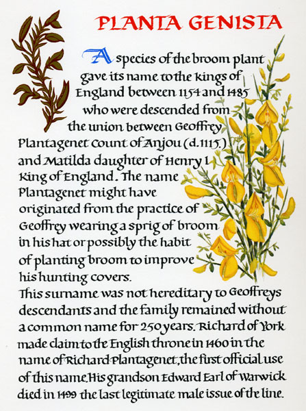 Quot Flowers In Heraldry Quot Compiled Designed Written And